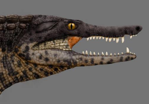 Amargasuchus restoration