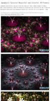 Apophysis Tutorial:Beautiful Colorful 3D Flowers