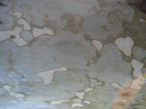 Wood texture IV