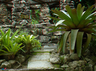 Jardim Botanico, RJ 07JUN09 71