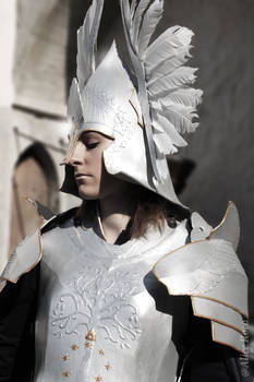 Guard of Gondor - At the doors
