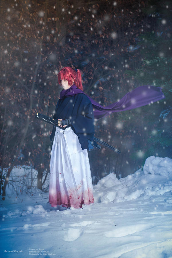 Rurouni Kenshin  - Forest Of Barriers by RomaiLee