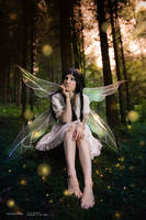 Yui - Fairy Forest