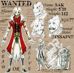 Bandit Guild: Sac Ref sheet by nork