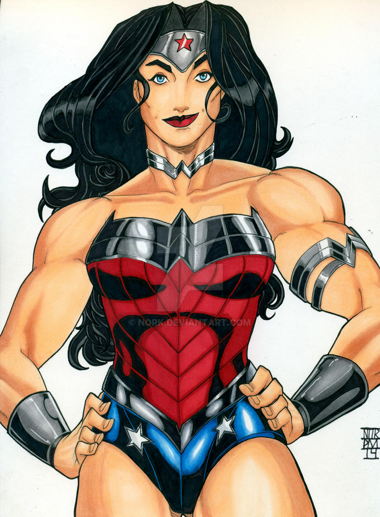 Hero 8: Wonder Woman by nork