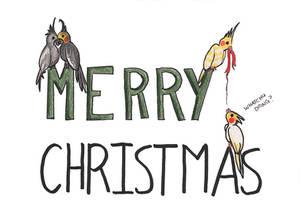 Merry Christmas Cockatiels