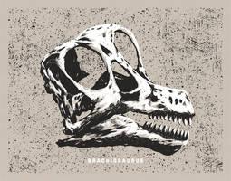 Dinosaur Skull - Brachiosaurus by FabledCreative