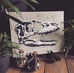 Dinosaur Skull - Albertosaurus