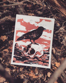 Crow and Skull