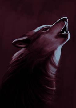 Loup Elisa
