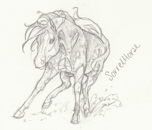 Horse Anatomy Sketch V by Jag6201 on DeviantArt