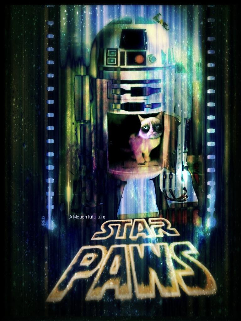 star paws grumpy cat v star wars by cb3723 on deviantart