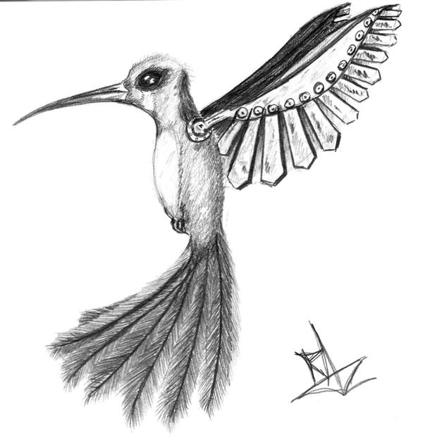 Humming bird by Razamanaz