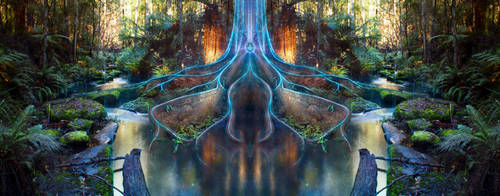 Through the Roots | Day by Bishop-Of-Balance