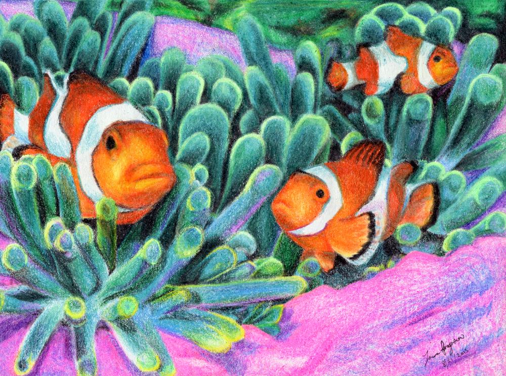 Clown Fish by mrinx on DeviantArt