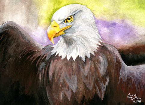Watercolor Eagle