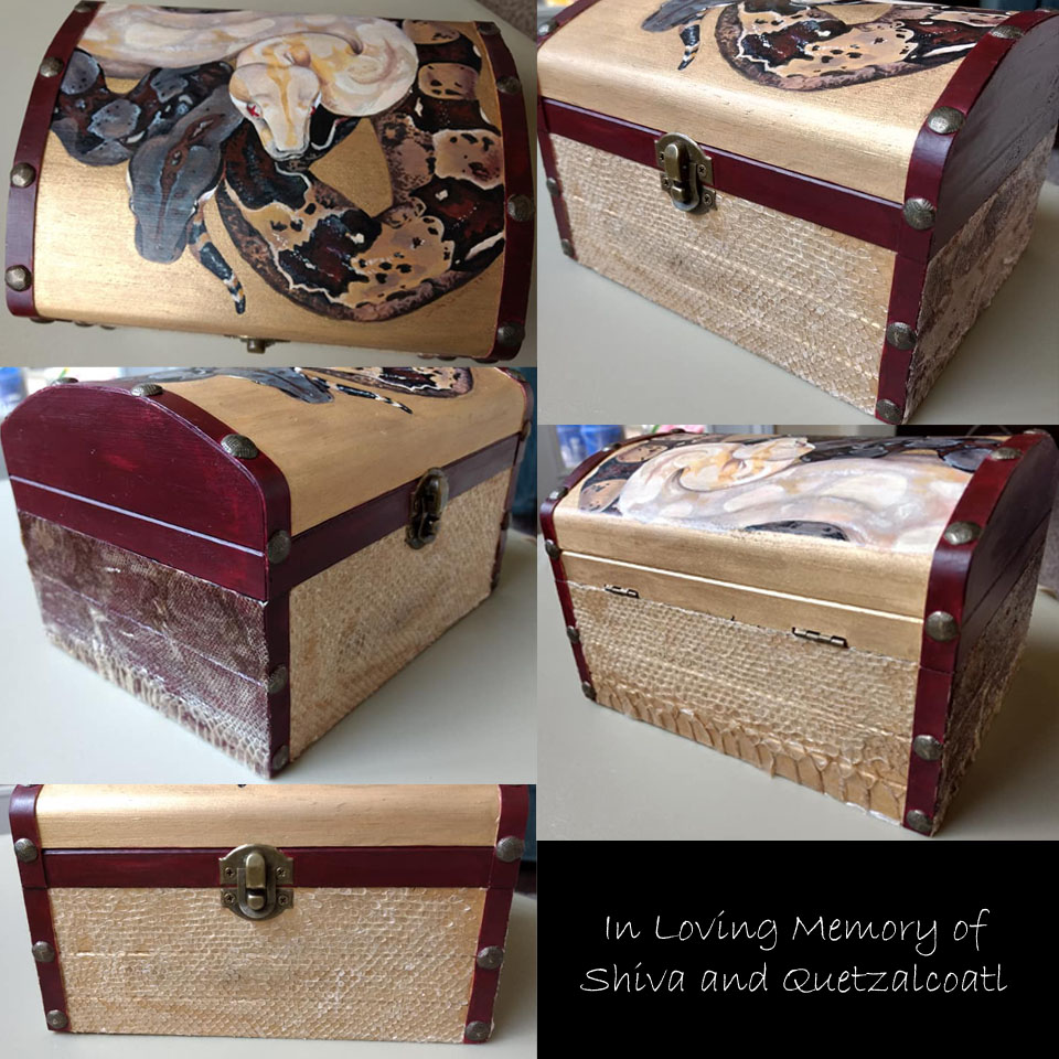 Shiva and Quetzalcoatl Memorial Box by mrinx