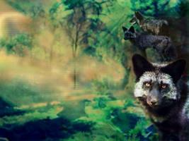 Pocket fox__ Run--textless by thus-sung