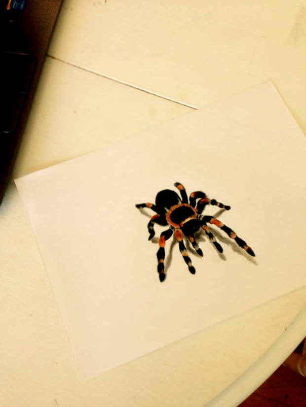 Spider by CamillaLB89
