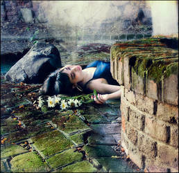 The garden feel by MiraNedyalkova