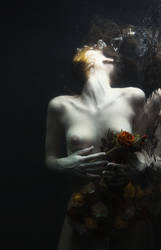 No more sweet music by MiraNedyalkova