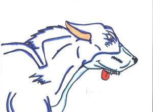 rennigon the wolfdog