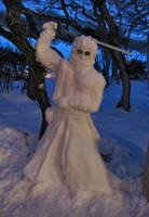 Sir Auron in the Snow, FFX by auronlu