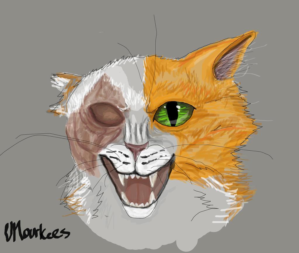 Brightpaw Warriors Brightheart/Cats-Warri...
