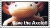 Axolotl by DoctorFluffy