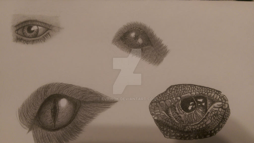Eyes by Evilnok