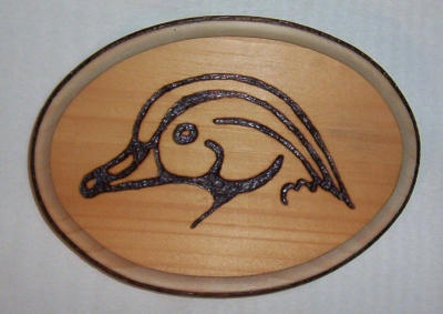 Wood Duck Wood Burning By Ringtaillemur ...