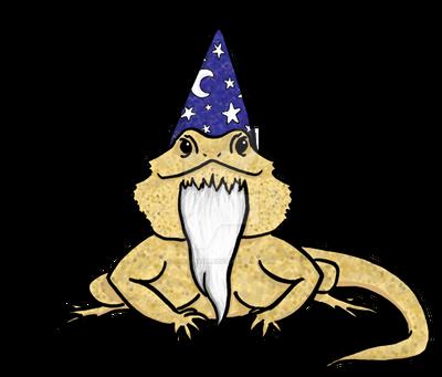 Wizard Lizard by jdrainville