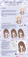 Hair Coloring Tutorial for Paint tool SAI by Circet