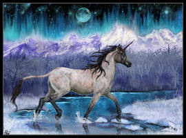 Winter magic by Hikari-kirin