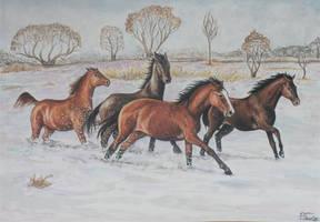 In Winter by Hikari-kirin