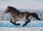 Winter run by Hikari-kirin