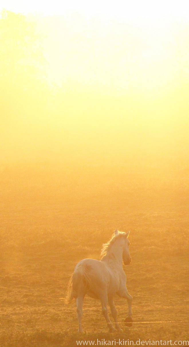 The sun by Hikari-kirin