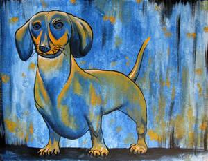 Playful dachshund in blue and orange