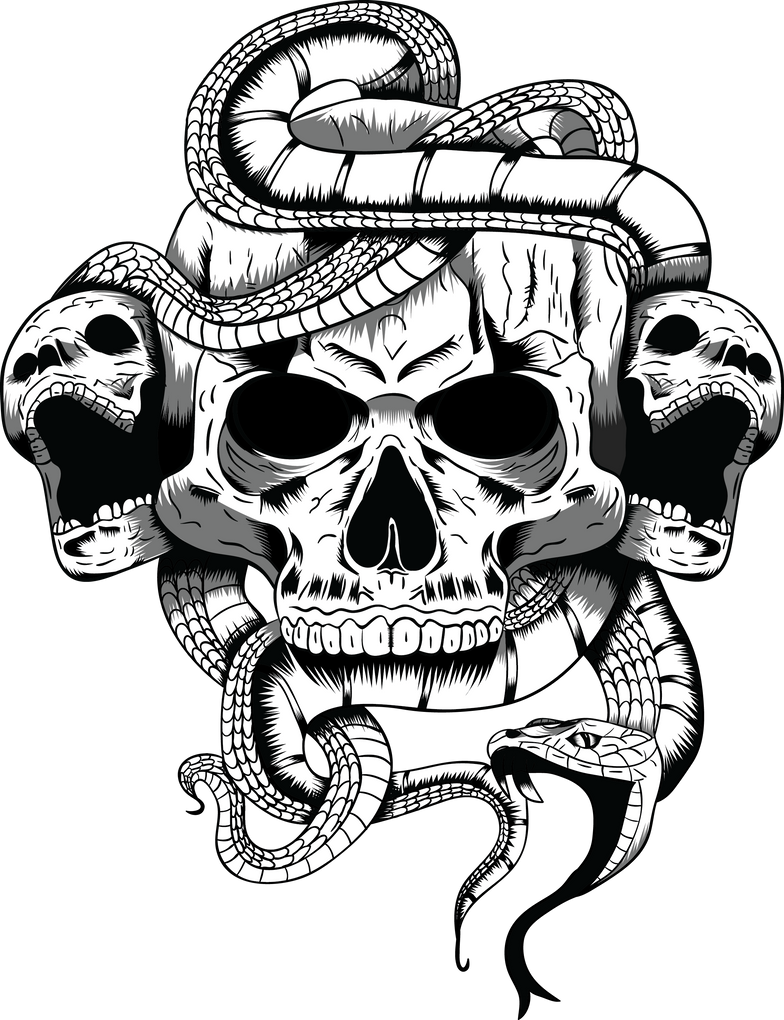 Skull Illustration by ArrtMan on DeviantArt