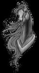 Arabian Profile   Stallion By Requay Greyscale