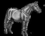 Free Pony Lineart By Kawisaurus Greyscale