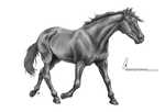 Free Lineart Trotting By Paigepony Greyscale
