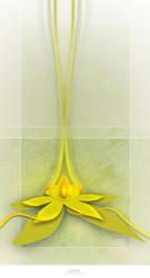 Lotus by apothix