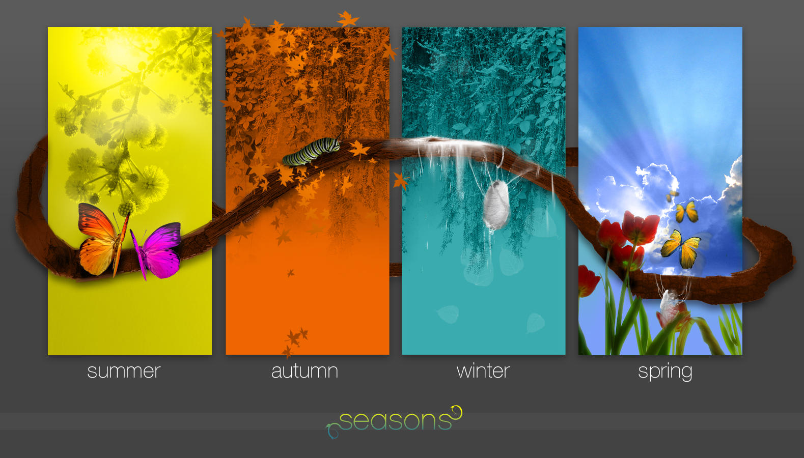 _Seasons by apothix