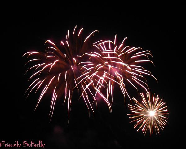 Pink Fireworks by FriendlyButterfly