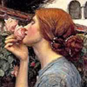 RoseFaerieTaleRed's Profile Picture