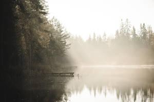 Sunrising Mist X by Freggoboy