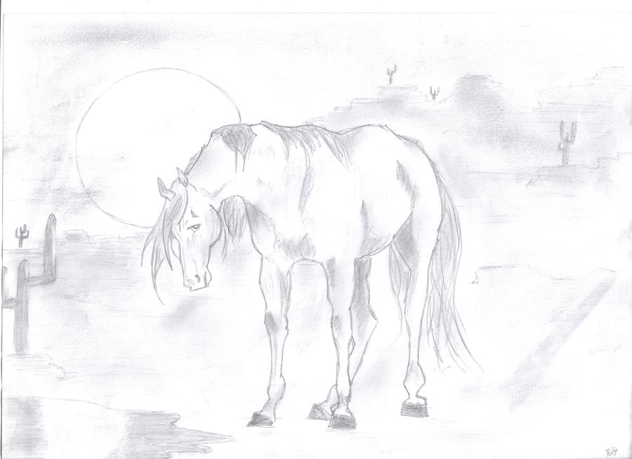 Lonely Desert Horse by xx--Girl--xx