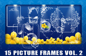 Picture Frame Brushes Vol. 2 by fiftyfivepixels