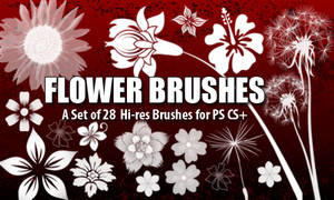 Flower Brushes 4 Photoshop CS+